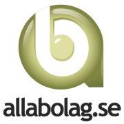 Bolagets finansiella ställning information hos allabolag.se